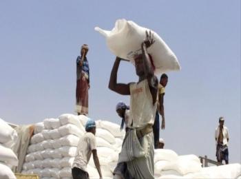 الغذاء العالمي: اليمن بحاجة إلى عملية لوجستية ضخمة لإنقاذ نصف السكان